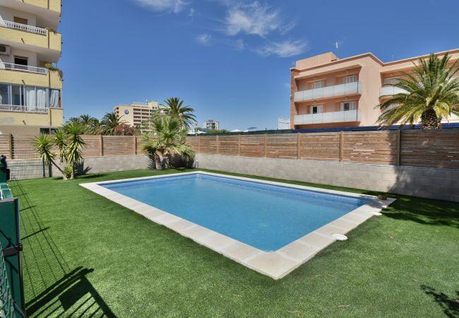 Apartament en Rosas / Roses - ISAR23- Apartamento con terraza y piscina comunita